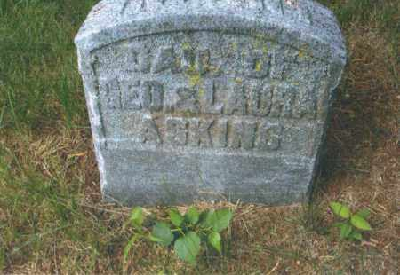 ASKINS, LAURA - Montgomery County, Ohio | LAURA ASKINS - Ohio Gravestone Photos