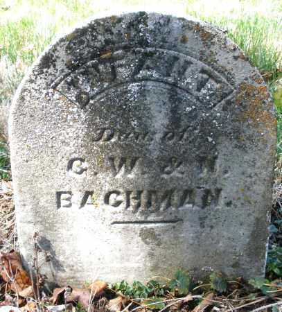 BACHMAN, INFANT DAUGHTER - Montgomery County, Ohio | INFANT DAUGHTER BACHMAN - Ohio Gravestone Photos