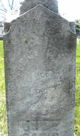 BAINS, SOPHIA - Montgomery County, Ohio | SOPHIA BAINS - Ohio Gravestone Photos