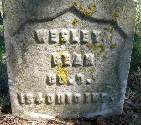 BEAN, WESLEY - Montgomery County, Ohio | WESLEY BEAN - Ohio Gravestone Photos