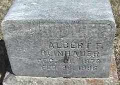 BEINHAUER, ALBERT F - Montgomery County, Ohio | ALBERT F BEINHAUER - Ohio Gravestone Photos