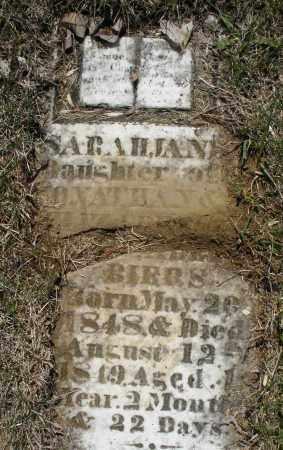 BIERS, SARAH JANE - Montgomery County, Ohio | SARAH JANE BIERS - Ohio Gravestone Photos