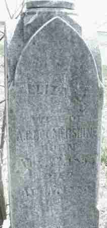 BOOMERSHINE, ELIZABETH - Montgomery County, Ohio | ELIZABETH BOOMERSHINE - Ohio Gravestone Photos