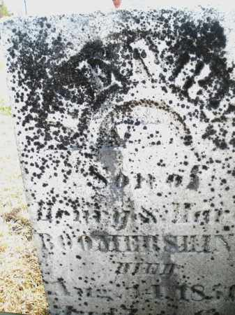 BOOMERSHINE, HENRY - Montgomery County, Ohio | HENRY BOOMERSHINE - Ohio Gravestone Photos