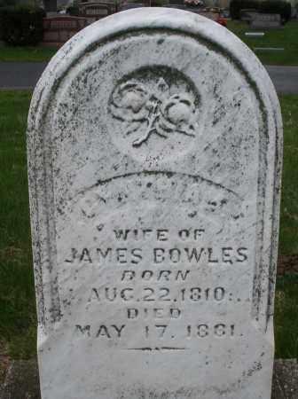 BOWLES, CYNTHIA - Montgomery County, Ohio | CYNTHIA BOWLES - Ohio Gravestone Photos