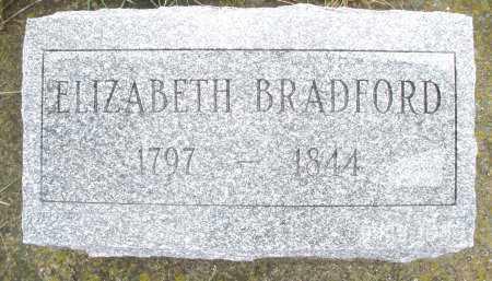 BRADFORD, ELIZABETH - Montgomery County, Ohio | ELIZABETH BRADFORD - Ohio Gravestone Photos