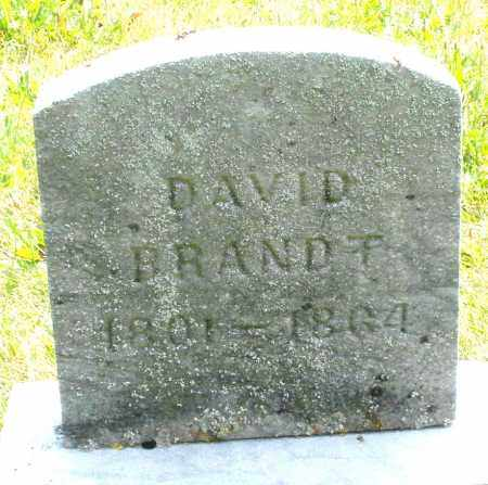 BRANDT, DAVID - Montgomery County, Ohio | DAVID BRANDT - Ohio Gravestone Photos