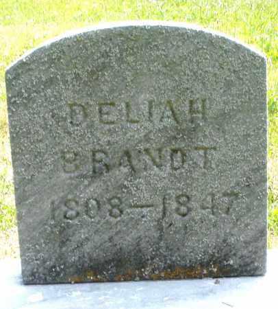BRANDT, DELIAH - Montgomery County, Ohio | DELIAH BRANDT - Ohio Gravestone Photos