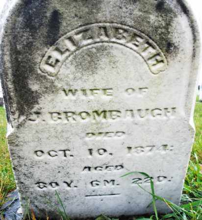 BRUMBAUGH, ELIZABETH - Montgomery County, Ohio | ELIZABETH BRUMBAUGH - Ohio Gravestone Photos