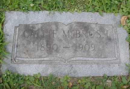 BRUSH, CALLIE M. - Montgomery County, Ohio | CALLIE M. BRUSH - Ohio Gravestone Photos