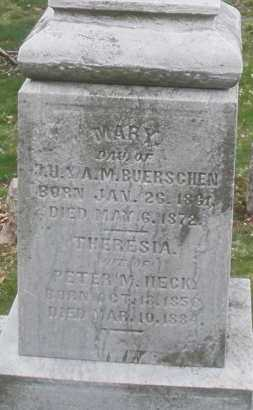 HECK, THERESIA - Montgomery County, Ohio | THERESIA HECK - Ohio Gravestone Photos