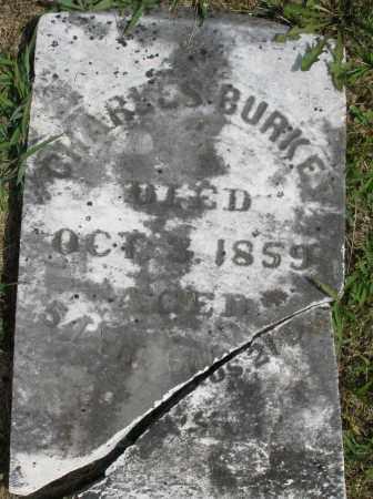 BURKE/BURKEL ?, CHARLES - Montgomery County, Ohio | CHARLES BURKE/BURKEL ? - Ohio Gravestone Photos