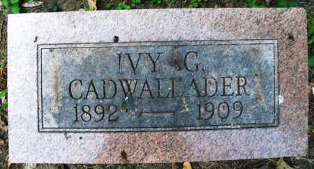 CADWALLADER, IVY G. - Montgomery County, Ohio | IVY G. CADWALLADER - Ohio Gravestone Photos