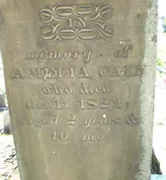 CAIN, AMELIA - Montgomery County, Ohio | AMELIA CAIN - Ohio Gravestone Photos