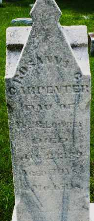 LOWREY CARPENTER, ROSANNA - Montgomery County, Ohio | ROSANNA LOWREY CARPENTER - Ohio Gravestone Photos