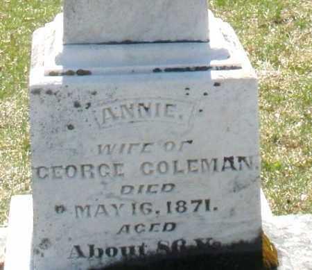 COLEMAN, ANNIE - Montgomery County, Ohio | ANNIE COLEMAN - Ohio Gravestone Photos