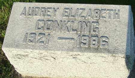 CONKLING, AUDREY ELIZABETH - Montgomery County, Ohio | AUDREY ELIZABETH CONKLING - Ohio Gravestone Photos
