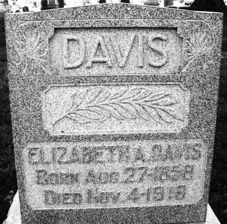 DAVIS, ELIZABETH - Montgomery County, Ohio | ELIZABETH DAVIS - Ohio Gravestone Photos