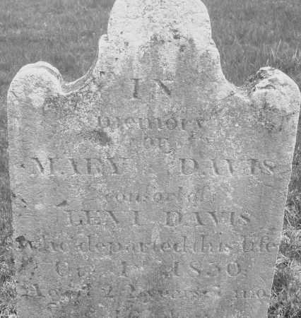 DAVIS, MARY - Montgomery County, Ohio | MARY DAVIS - Ohio Gravestone Photos