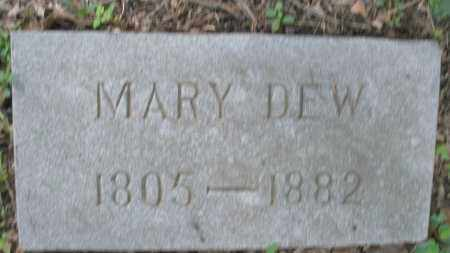 DEW, MARY - Montgomery County, Ohio | MARY DEW - Ohio Gravestone Photos