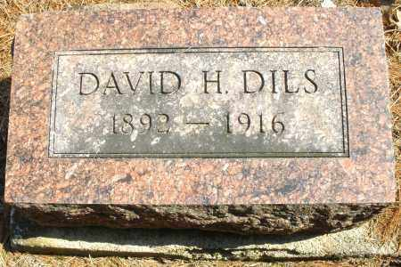 DILS, DAVID H. - Montgomery County, Ohio | DAVID H. DILS - Ohio Gravestone Photos
