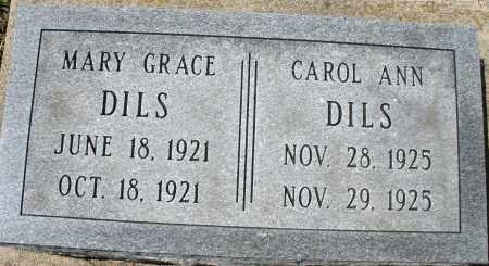 DILS, CAROL ANN - Montgomery County, Ohio | CAROL ANN DILS - Ohio Gravestone Photos