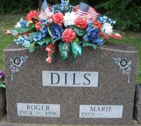 DILS, ROGER - Montgomery County, Ohio | ROGER DILS - Ohio Gravestone Photos