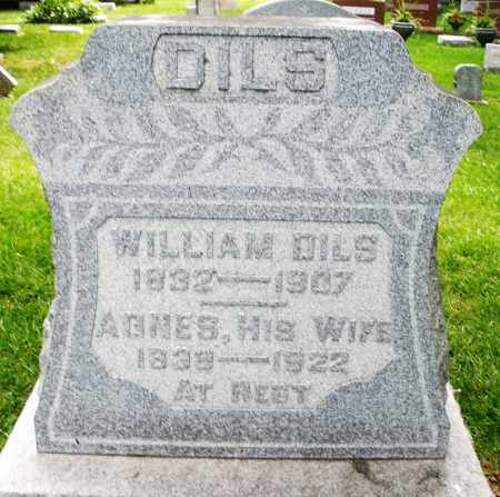 DILS, WILLIAM - Montgomery County, Ohio | WILLIAM DILS - Ohio Gravestone Photos