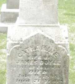 DOYLE, CATHARINE - Montgomery County, Ohio | CATHARINE DOYLE - Ohio Gravestone Photos