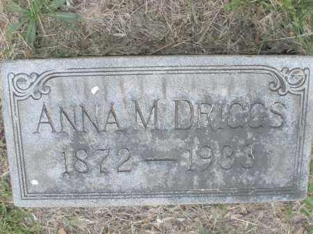 DRIGGS, ANNA M. - Montgomery County, Ohio | ANNA M. DRIGGS - Ohio Gravestone Photos