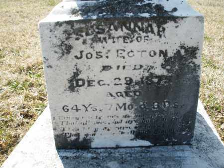 ECTON, SUSANNA - Montgomery County, Ohio | SUSANNA ECTON - Ohio Gravestone Photos