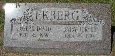 FRYER EKBERG, DAISY - Montgomery County, Ohio | DAISY FRYER EKBERG - Ohio Gravestone Photos