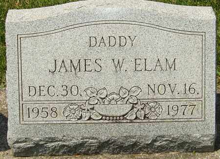 ELAM, JAMES WALTER - Montgomery County, Ohio | JAMES WALTER ELAM - Ohio Gravestone Photos