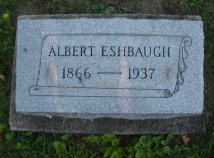 ESHBAUGH, ALBERT - Montgomery County, Ohio | ALBERT ESHBAUGH - Ohio Gravestone Photos