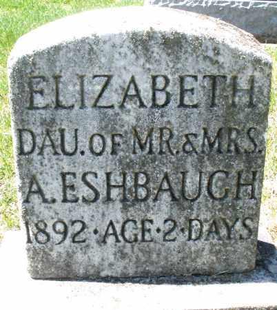 ESHBAUGH, ELIZABETH - Montgomery County, Ohio | ELIZABETH ESHBAUGH - Ohio Gravestone Photos