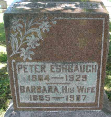 ESHBAUGH, PETER - Montgomery County, Ohio | PETER ESHBAUGH - Ohio Gravestone Photos