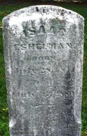 ESHELMAN, ISAAC - Montgomery County, Ohio | ISAAC ESHELMAN - Ohio Gravestone Photos