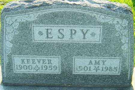 ESPY, AMY CINDERELLA - Montgomery County, Ohio | AMY CINDERELLA ESPY - Ohio Gravestone Photos