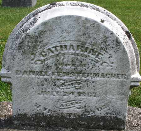 FENSTERMACHER, CATHARINE - Montgomery County, Ohio | CATHARINE FENSTERMACHER - Ohio Gravestone Photos