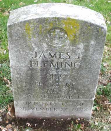 FLEMING, JAMES J. - Montgomery County, Ohio | JAMES J. FLEMING - Ohio Gravestone Photos