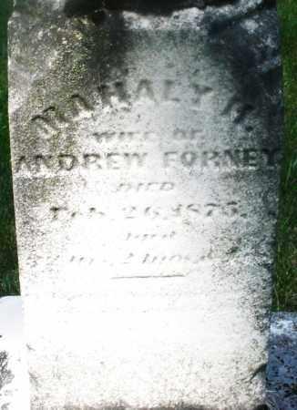FORNEY, MAHALY H. - Montgomery County, Ohio | MAHALY H. FORNEY - Ohio Gravestone Photos