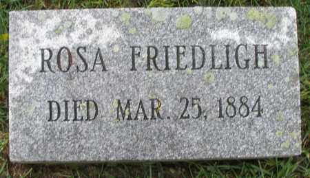 FRIEDLIGH, ROSA - Montgomery County, Ohio | ROSA FRIEDLIGH - Ohio Gravestone Photos