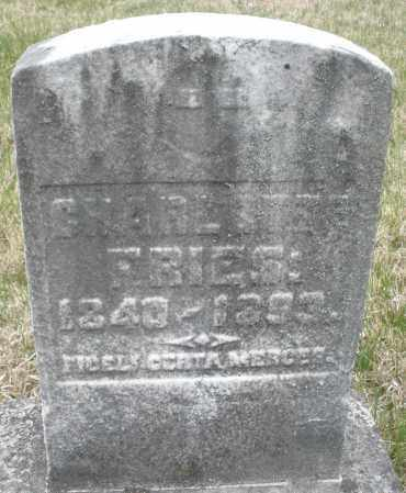 FRIES, CHARLES - Montgomery County, Ohio | CHARLES FRIES - Ohio Gravestone Photos