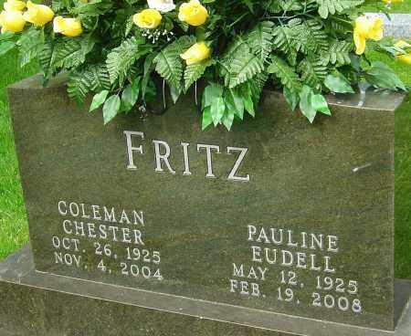 FRITZ, CHESTER COLEMAN - Montgomery County, Ohio | CHESTER COLEMAN FRITZ - Ohio Gravestone Photos