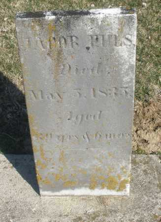 FULS, JACOB - Montgomery County, Ohio | JACOB FULS - Ohio Gravestone Photos
