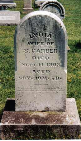 GARBER, LYDIA - Montgomery County, Ohio | LYDIA GARBER - Ohio Gravestone Photos