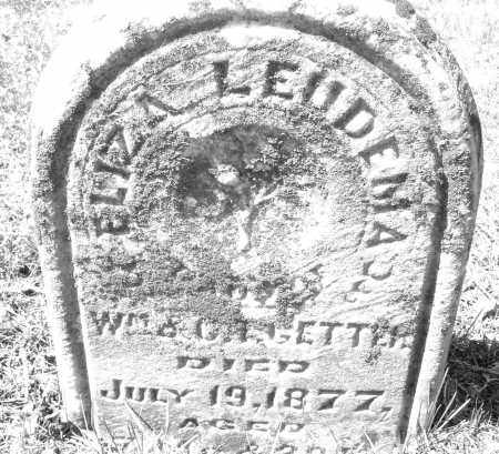 GETTER, ELIZA LEUDEMA - Montgomery County, Ohio | ELIZA LEUDEMA GETTER - Ohio Gravestone Photos