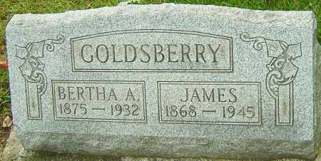 BOYS GOLDSBERRY, BERTHA A - Montgomery County, Ohio | BERTHA A BOYS GOLDSBERRY - Ohio Gravestone Photos