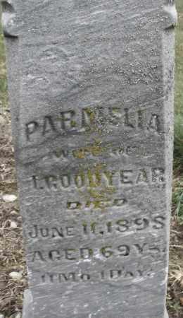 GOODYEAR, PARMELIA - Montgomery County, Ohio | PARMELIA GOODYEAR - Ohio Gravestone Photos