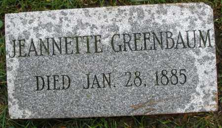 GREENBAUM, JEANNETTE - Montgomery County, Ohio | JEANNETTE GREENBAUM - Ohio Gravestone Photos